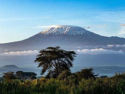 Килиманджаро + Нгоронгоро + Тарангире 3 дня/2 ночи