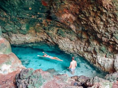 Плавание с дельфинами – Священная пещера – Национальный парк Джозани – Мангровый лес