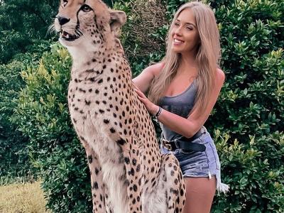 Билеты в зоопарк Cheetah's Rock + трансфер